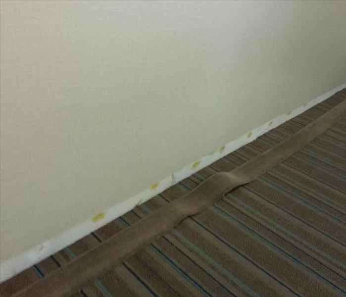 Keeping Commercial Water Damage Discrete