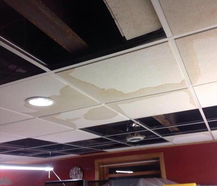 Commercial Local Henderson Business Suffers Water Damage