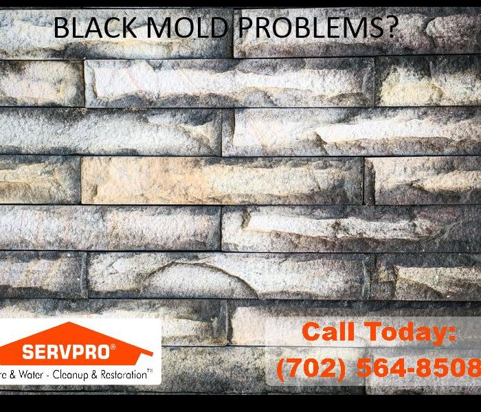 Mold Remediation In Las Vegas Black Mold Remediation is Serious Business
