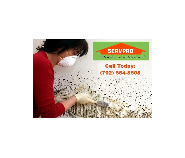 Mold Remediation 3 Quick & Simple Ways to Identify Mold is Growing