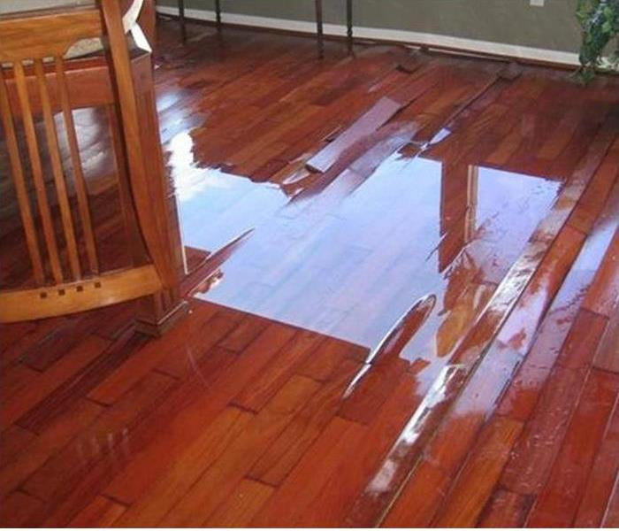 Water pooling on Hardwood Flooring