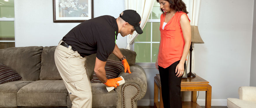Henderson, NV carpet upholstery cleaning